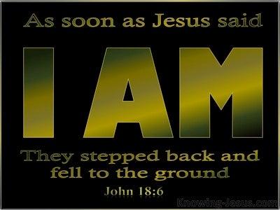John 18:6 Jesus Said I Am And They All Fell Back (black)