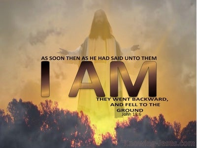 John 18:6 Jesus Said I Am And They All Fell Back (yellow)