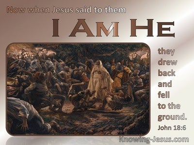 John 18:6 Jesus Said I Am He And They Drew Back (brown)