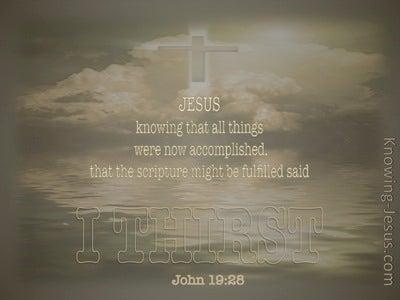 John 19:28 Jesus Said I Thirst (beige)