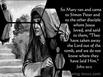 John 20:2 Mary Ran To Simon Peter And The Other Disciple (gray)