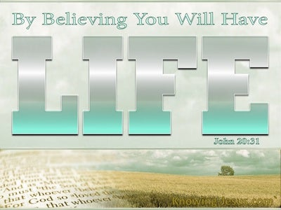 John 20:31 By Believing You WIll Have Life (silver)
