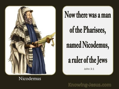 John 3:1 Now There Was A Man Named Nicodemus (brown)