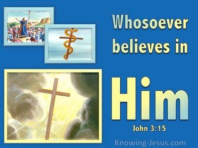 John 3:15 Whoever Believes In Him (blue)