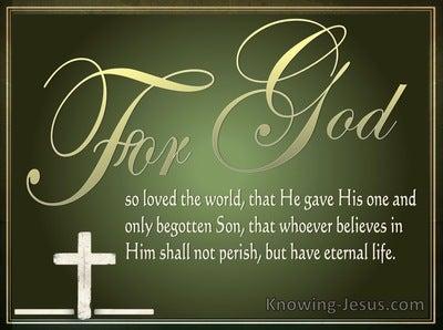 John 3:16 For God So Loved The World (sage)