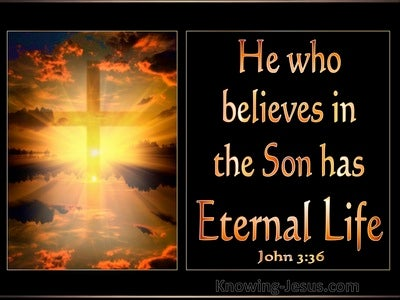 John 3:36 He Who Believes Has Eternal Life (gold)