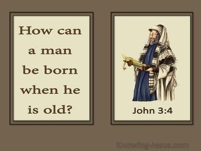 John 3:4 How Can A Man Be Born Again (brown)
