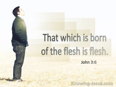 John 3:6 That Born Of The Flesh Is Flesh (windows)02:12