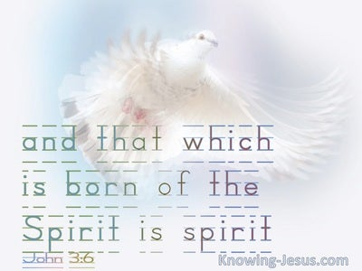 John 3:6 That Which Is Born Of The Flesh is Flesh (white)