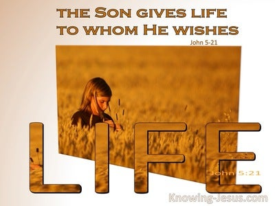 John 5:21 The Son Gives Life To Whom He Wishes (white)