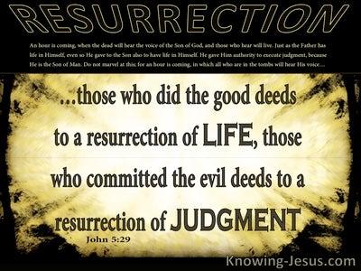 John 5:29 Life Or Judgement (yellow)