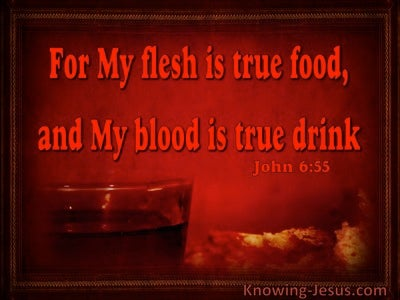 John 6:55 My Flesh Is True Food (maroon)