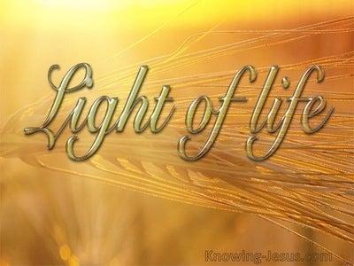 John 8:12 Jesus Is The Light Of TheWorld (yellow)