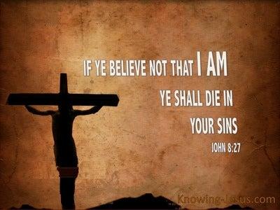 John 8:24 If Ye Believe Not Ye Shall Die in Your Sins (brown)