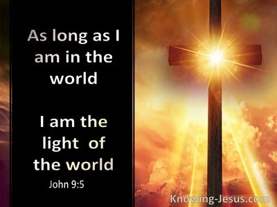 John 9:5 While I Am In The World I Am The Light Of The World (brown)