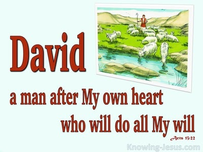 Acts 13:22 A Man After Gods Own Heart (red)