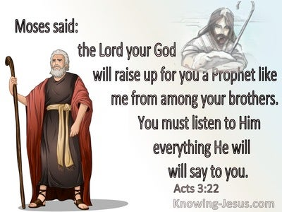 Acts 3:22 The Lord Will Raise Up A Prophet Like Me (brown)