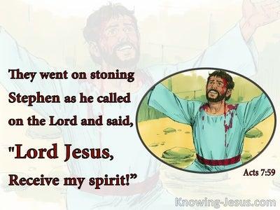 Acts 7:59 Stephen Said Lord Jesus Receive My Spirit (white)