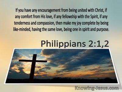Philippians 2:1,2 Make My Joy Complete (brown)