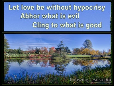 Romans 12:9 Let Love Be Without Hypocrisy Abhor What Is Evil Cling To What Is Good (blue) bible