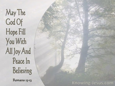 Romans 15:13 May The God Of Hope Fill You With All Joy And Peace In Believing (gray)