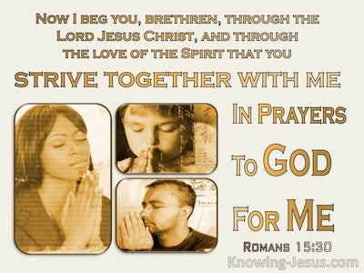 Romans 15:30 Strive Together With Me In Prayer (yellow)