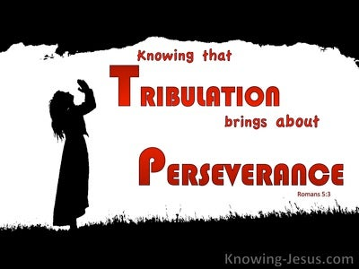 Romans 5:3 Exult In Sufffering Which Brings Perseverance (red)