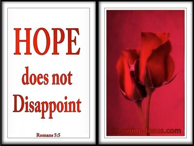Romans 5:5 Hope Does Not Disappoint (red)