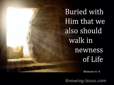 Romans 6:4 Buried With Him That We Also Should Walk In Newness Of Life (brown)