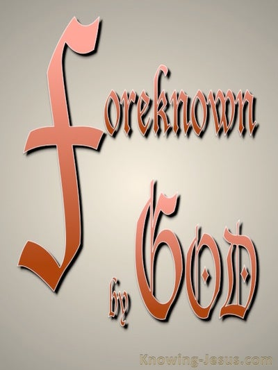 Foreknown of God (devotional)