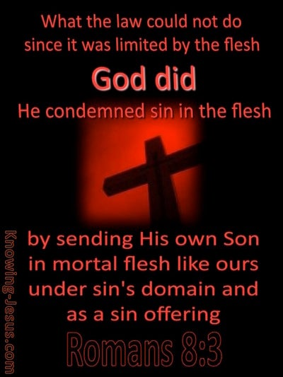 Romans 8:3 God Sent His Son (black)