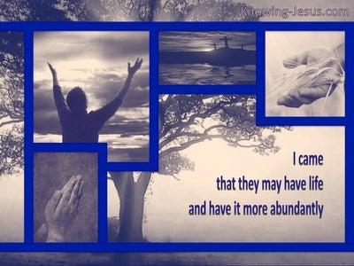 Romans 10:10 Abundant Life (blue)