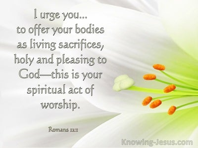 Romans 12:1 Offer Your Bodies As A Living Sacrifice To God (windows)11:10
