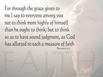 Romans 12:3 A Measure Of Faith (gray)