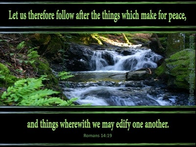 Romans 14:19 Follow After That Which Makes For Peace (black)
