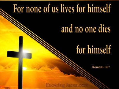 Romans 14:7 For None Of Us Lives For Himself (orange)