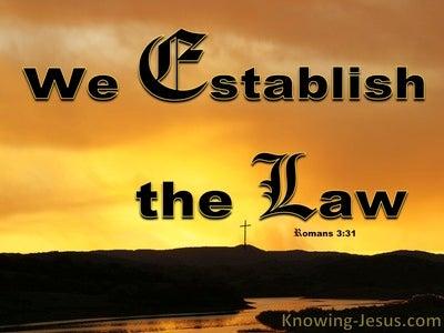 Romans 3:31 Do We Establish The Law (orange)