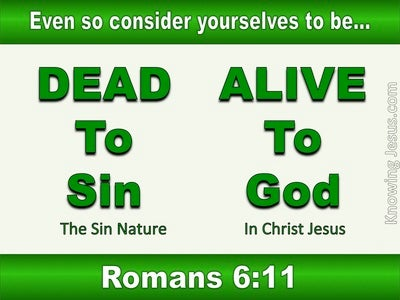 Romans 6:11 Dead To Sin Alive To God (green)