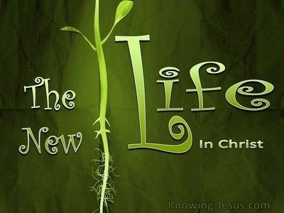 Romans 7:6 The New Life (devotional)03:12 (green)