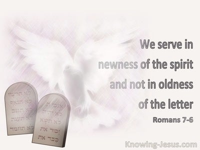 Romans 7:6 We Serve In Newness Of The Spirit And Not In Oldness Of The Letter (pink)