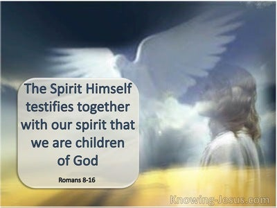 Romans 8:16 The Spirit Himself Beareth Witness With Our Spirit (navy)