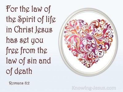 Romans 8:2 The Law Of Love (devotional)05:05 (gray)