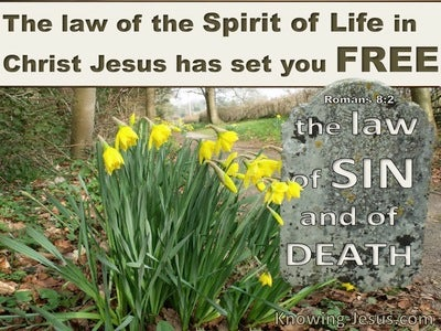 Romans 8:2 The Law Of The Spirit Of Life In Christ Jesus (beige)
