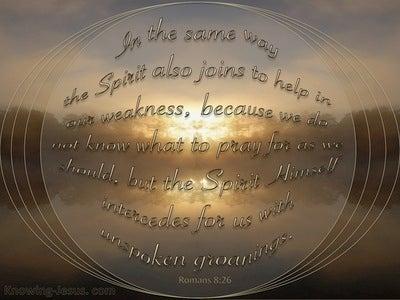 Romans 8:26 The Spirit Intercedes (brown)