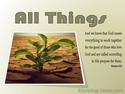 Romans 8:28 All Things Work Together For Good (sage)