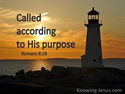 Romans 8:28 Called According To His Purpose (windows)01:01