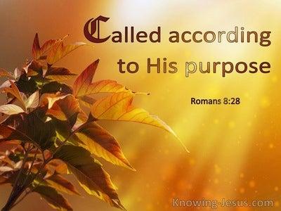 Romans 8:28 Called According To His Purpose (windows)06:03