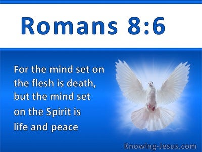 Romans 8:6 The Mind Set On The Spirit Is Life And Peace (white)