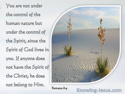 Romans 8:9 Are Controlled Not By The Sinful Nature But By The Spirit (silver)