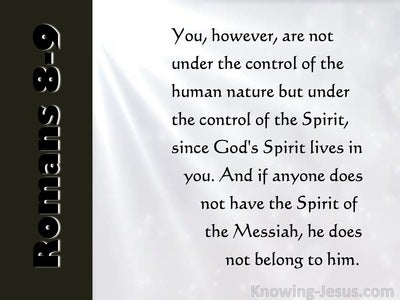 Romans 8:9 You Are Not In The Flesh But In The Spirit (pink)